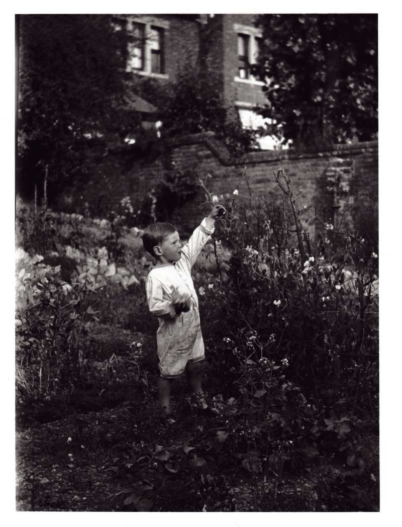 A young Leonard Cheshire picking fruit in a country cottage garden