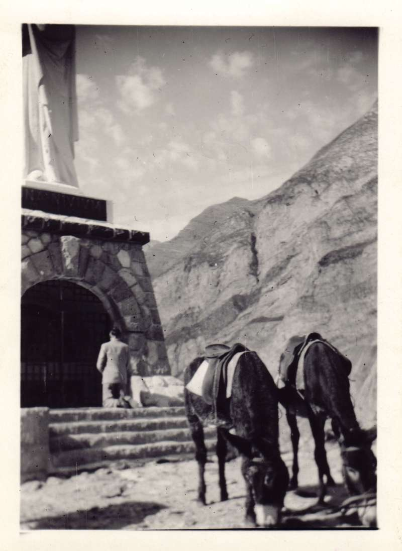 A distant shot of Leonard Cheshire praying at Lourdes, with two donkeys in the foreground