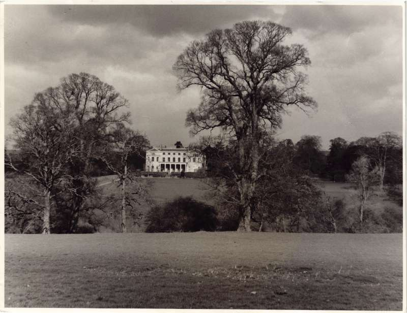 Photo of the Mote House building in the distance with large trees in the foreground